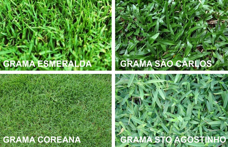 Cuidar do gramado no quintal - Imagem: Clique Arquitetura.