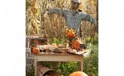 11 Ideias para sua Festa de Halloween