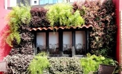Jardins Verticais - Comerciais | Ganden