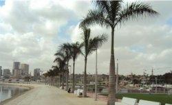 Mobiliário Urbano Amop - Luanda | WLP